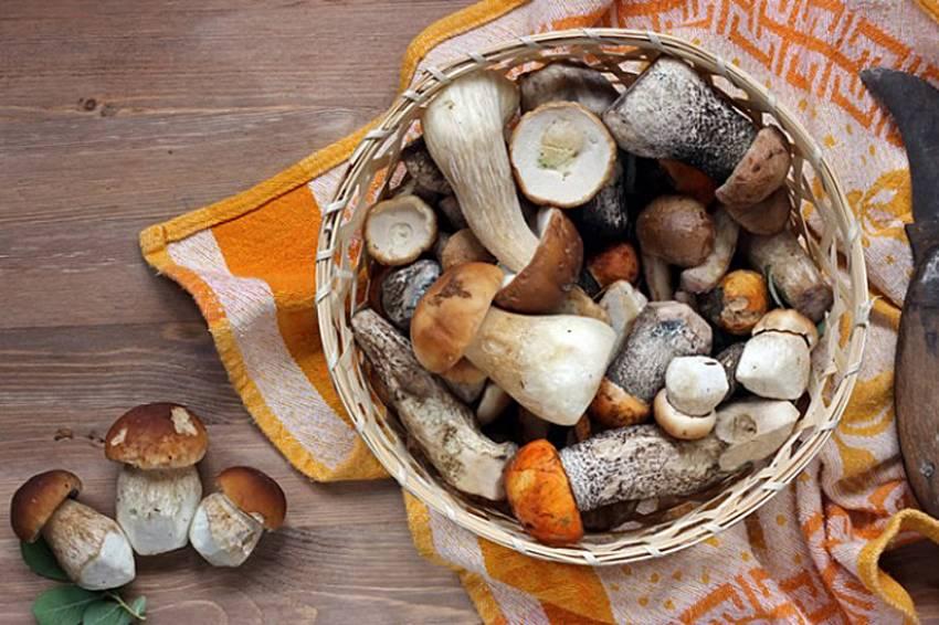 На Овруччині подружжя отруїлося грибами