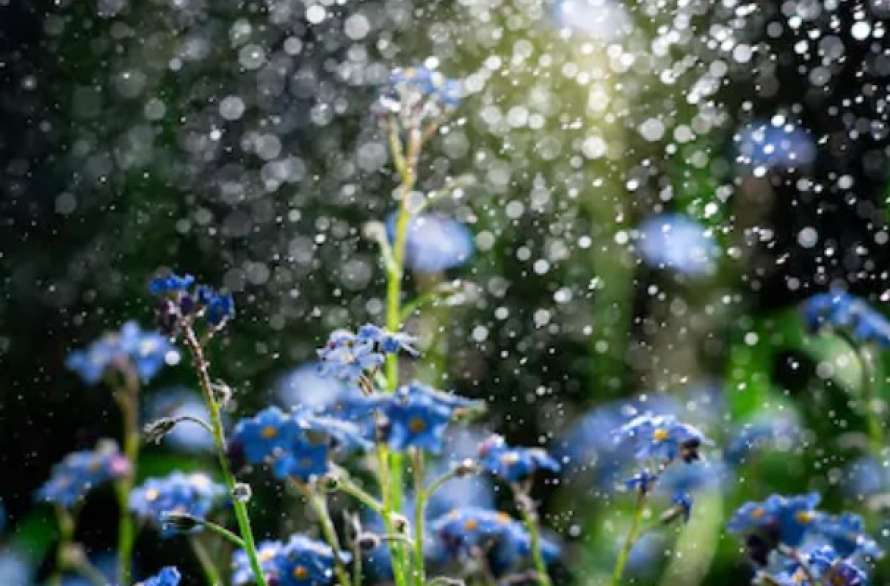 Вихідними в Україні буде прохолодно, синоптики прогнозують дощі