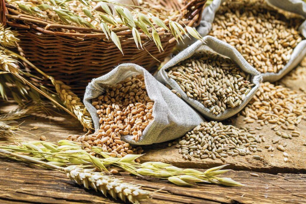 На Житомирщині на 2 мільйони гривень обікрали агропідприємство