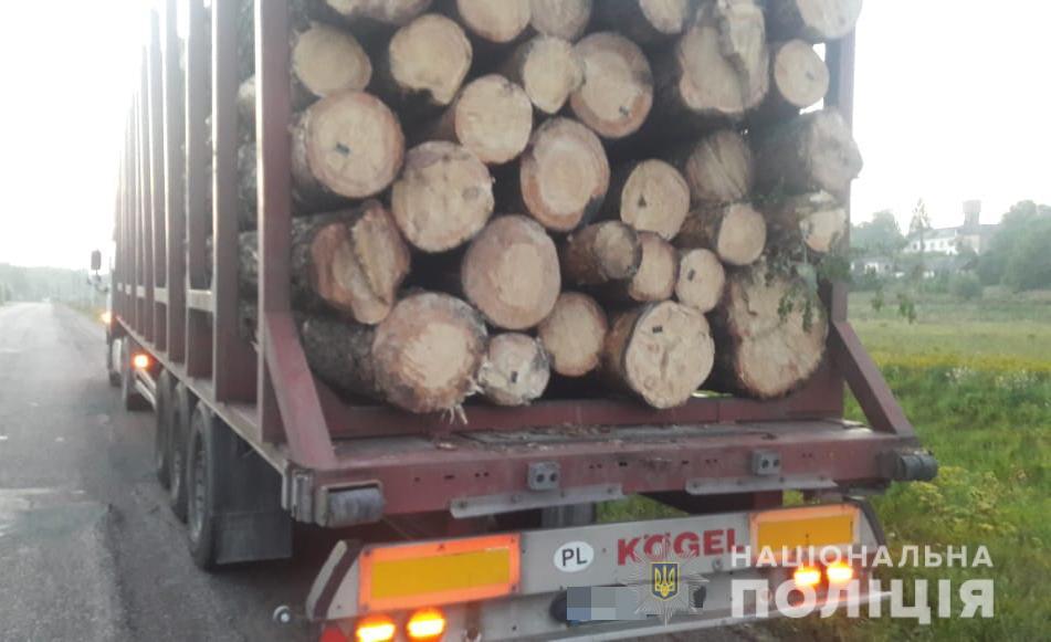 На Овруччині вантажівкою незаконно перевозили ліс